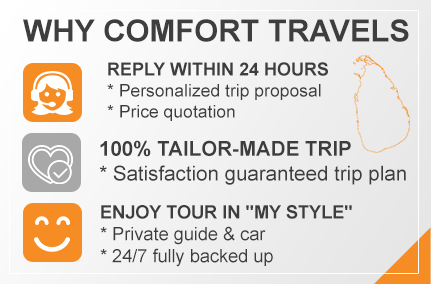 why-comfort-travels-sri-lankan