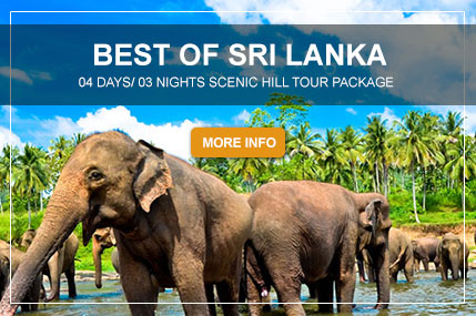 BEST-OF-SRI-LANKA