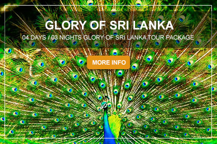GLORY-OF-SRI-LANKA